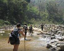 pooh eco trekking 1.jpg