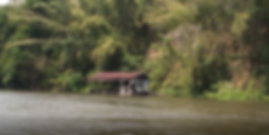 jungle raft 3.png