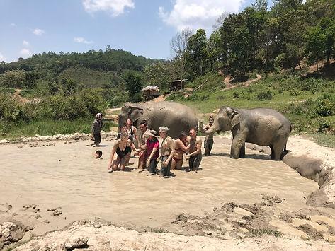 bain de boue avec elephants - voyages thailande circuit