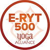 E-RYT500.jpg