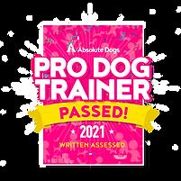 PDT_2.0_Badge.png