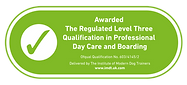 Level Three qualification logo large.png