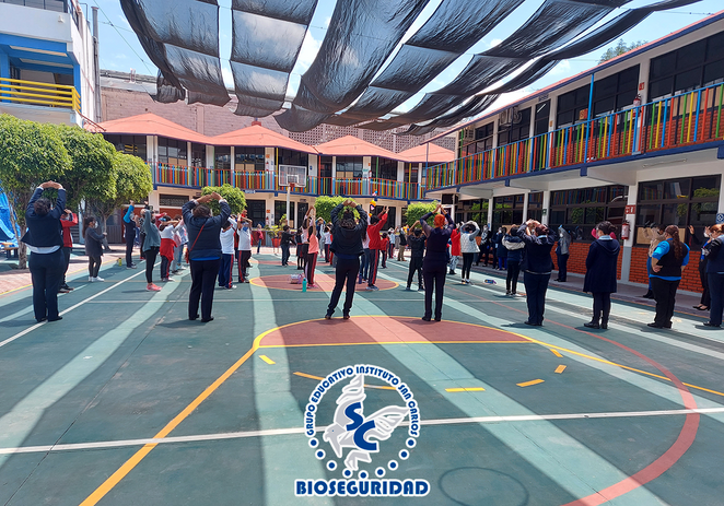 bioseguridad19.png