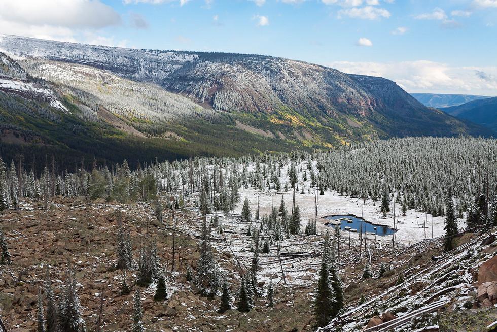 Season Change // Uinta-Wasatch-Cache National Forest, UT