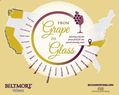 GrapeToGlass_Infographic_Final_2019 4.pn