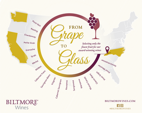 GrapeToGlass_Infographic_Final_2019 4.pn