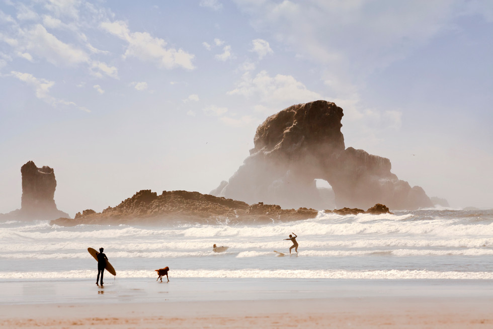 Surf Dog //  Ecola State Park, OR