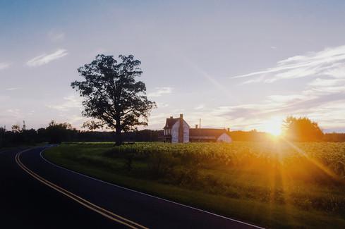 NC Backroad // Durham, NC