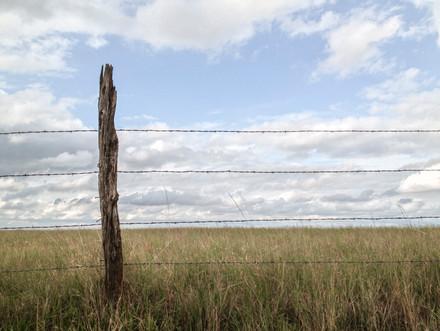 Fence // Badlands National Park, SD