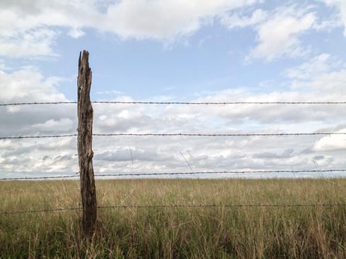 Fence Post  //  Badlands National Park, SD