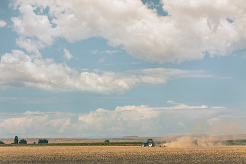 Tractor  //  Big Horn County, WY