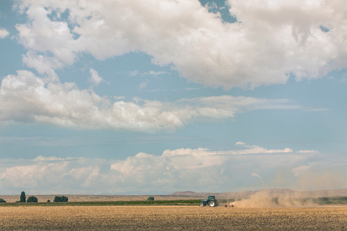 Tractor // Big Horn County, Wyoming