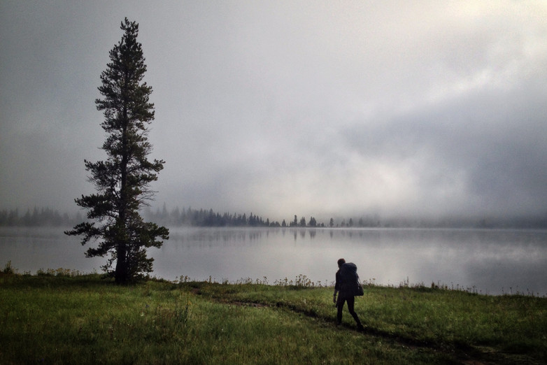 Morning Mist // Yellowstone National Park, WY