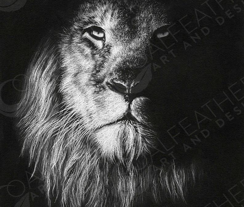 Royal-Lion