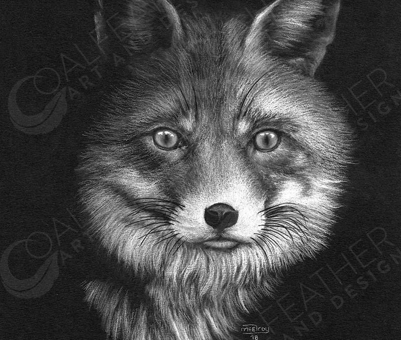 Trickster_Fox