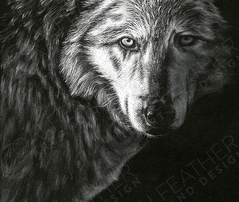 Wanderer_Wolf