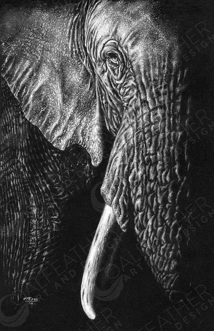 Noble-Elephant.jpg