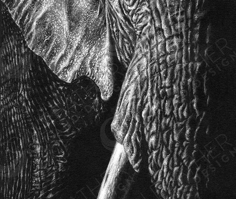 Noble-Elephant