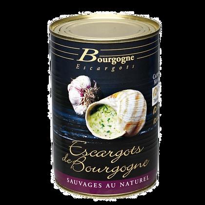 Escargot di Borgogna 48 pz lattina