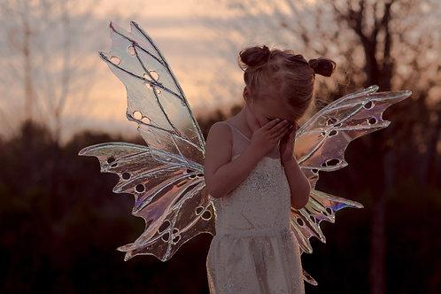 Little Sylph Fairy Wings