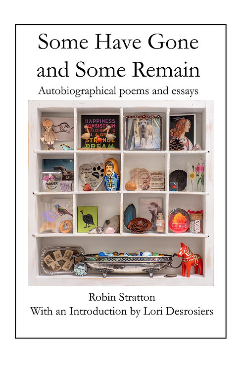 Some Have Gone and Some Remain by Robin Stratton
