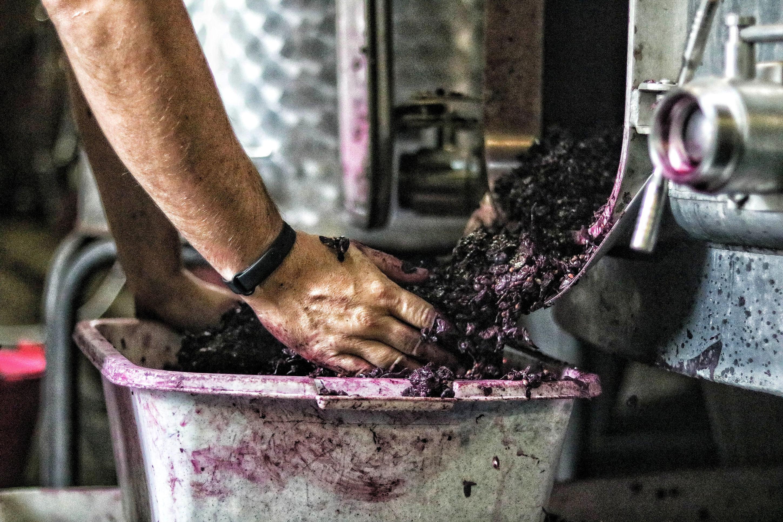 decuvage-vin-rouge