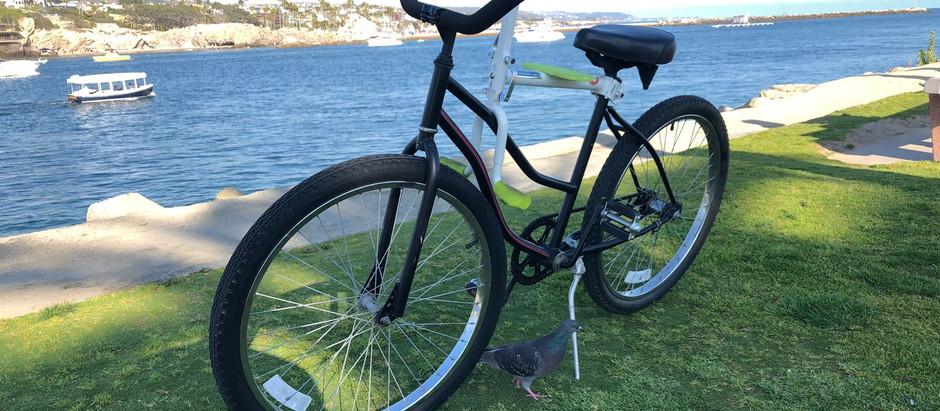 趴趴坐腳踏車兒童座椅到了加洲 New Port Beach