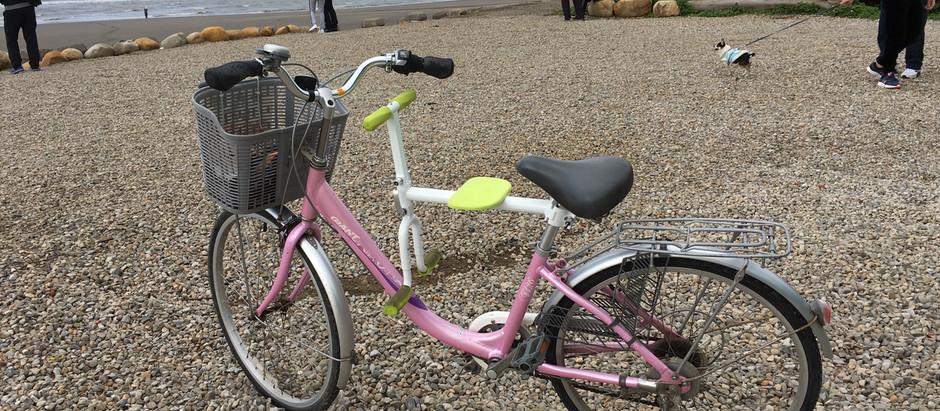 趴趴坐腳踏車兒童座椅到了桃園新屋綠色走廊自行車道