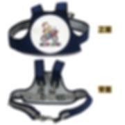Belt_CHT_500x500.jpg