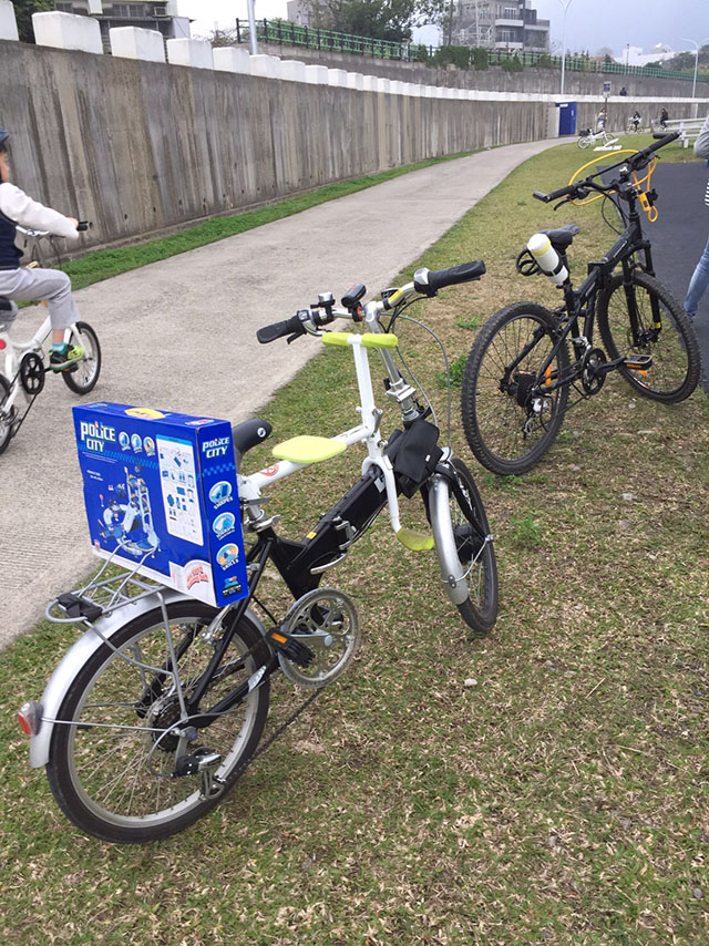 PaPaSeat Child Bike Seat