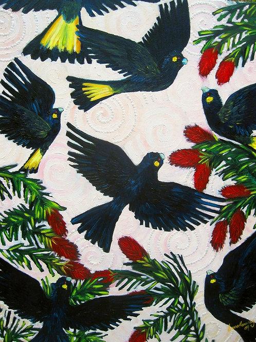Limited Edition Print: Black Cockatoos