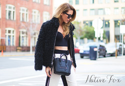 Native Fox Blog