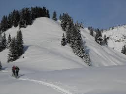 Tourenänderung am 19.01.20: Karkopf (1507 m)    statt Scheibenkogel.