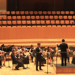 Luis Fernández-Castelló (clarinet), Ensemble Col legno. Palau de la Música (Valencia), 2013.