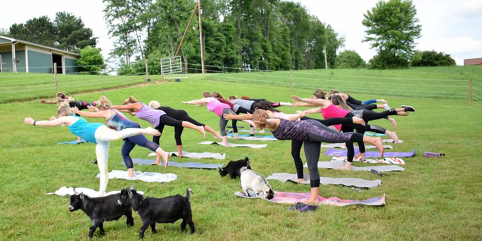 Goat Yoga Wed. June 19th