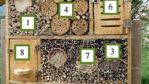 5. Confectionner un hôtel à insectes...