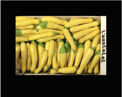 Courgette jaune France (vendu par lot de 3 pièces)