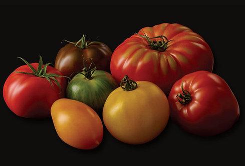 Tomate de couleurs 4 variétés France  (vendu au kilo)