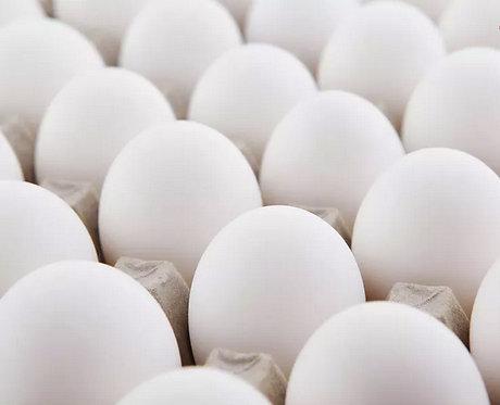 Oeufs blancs (vendu par plaque de 30)