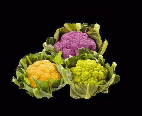 Chou fleur couleur (vendu à la pièce)