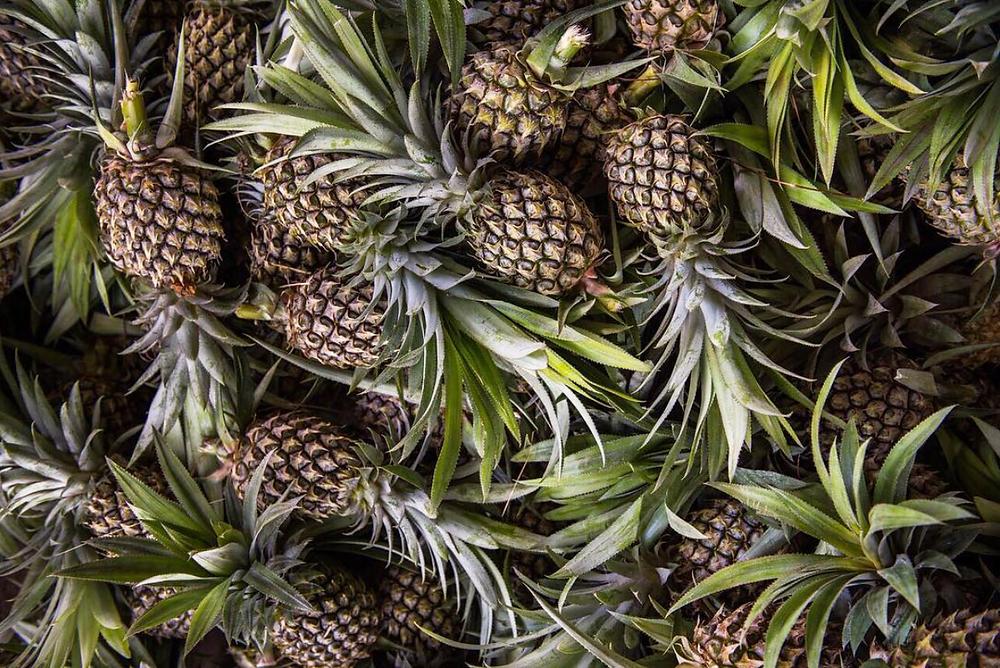 Pineapples fruit vegan leather