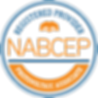 NABCEP Registered Provider_Photovoltaic Associate_edited_edited_edited_edited.png
