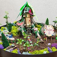 Fairy garden camp davis.jpg
