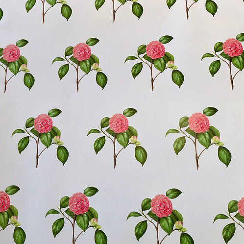 Camellia Wrapping Paper