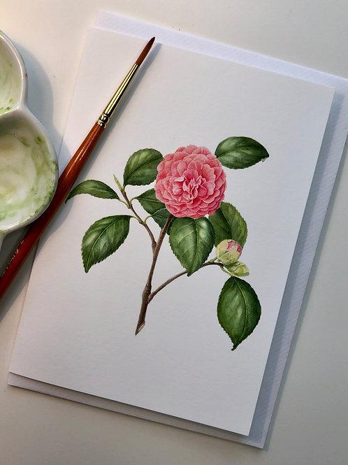 Camellia Card A5