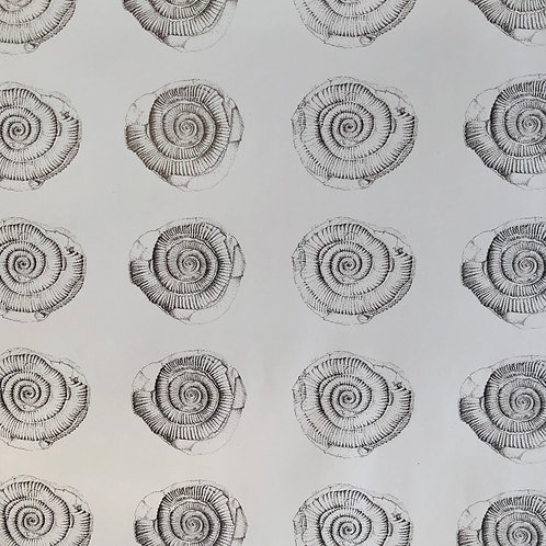 Ammonite Wrapping Paper