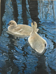 """""""Thirsty"""" 12x16 oil on gallery wrapped canvas ,edges are black. $ 275.00 I kept thinking about the lovely lady who took the photo reference for this adorable gosling and his sister drinking water. Many of you know while I paint I will meditate, sing , listen to music or sermons and pray. Yes ! I got to do all of them and pray for my  friend Nicole too. Proverbs 25:25 says""""Good news from far away is like cold water to the thirsty."""""""