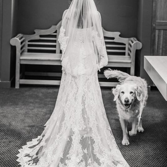 Lesli Chrystal wedding dress 2.jpg