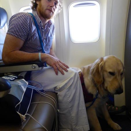 Emergency landing avoided due to diabetic alert dog, John & Nikon