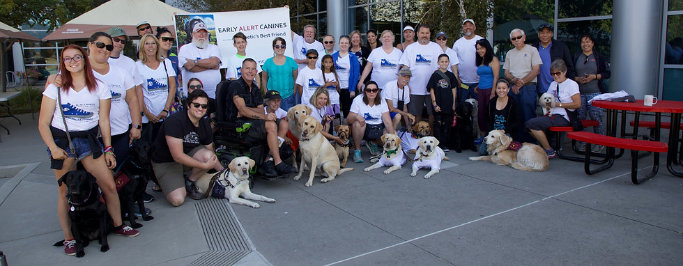 A group of over 20 volunteers and canines, photographed outdoors at a fundraising event